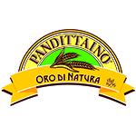 Logo Pandittaino