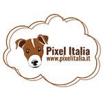 LOGO 2018 PIXEL ITALIA